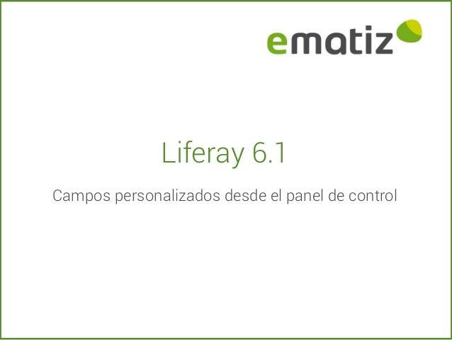 Liferay 6.1 Campos personalizados desde el panel de control