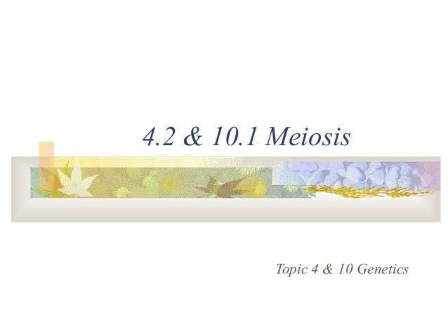 4.2 & 10.1 Meiosis Topic 4 & 10 Genetics