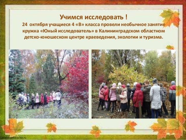 Учимся исследовать ! 24 октября учащиеся 4 «В» класса провели необычное занятие кружка «Юный исследователь» в Калининградс...