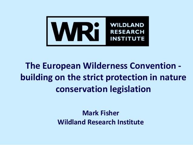 European Wilderness Convention