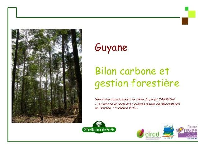 Guyane Bilan carbone et gestion forestière Séminaire organisé dans le cadre du projet CARPAGG « le carbone en forêt et en ...