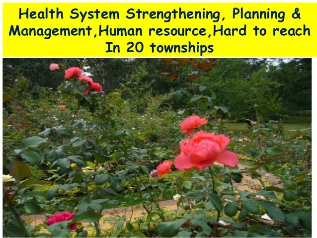 Health System Strengthening, Planning & Management,Human resource,Hard to reach In 20 townships