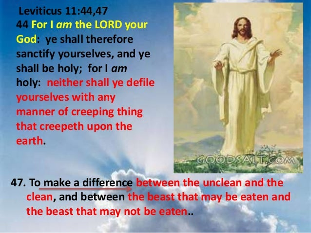 Leviticus 11 44 Leviticus 11 44 47 44 For i am
