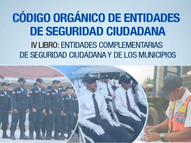 NTIDADES COMPLEMENTARIAS DE LA SEGURIDAD CIUDADANA