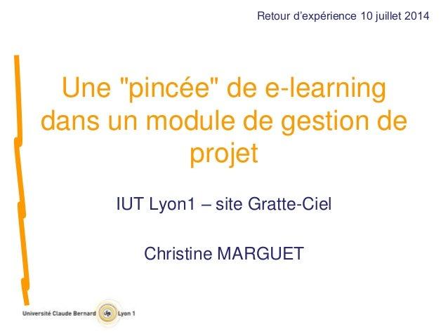 """Une """"pincée"""" de e-learning dans un module de gestion de projet IUT Lyon1 – site Gratte-Ciel Christine MARGUET Retour d'exp..."""