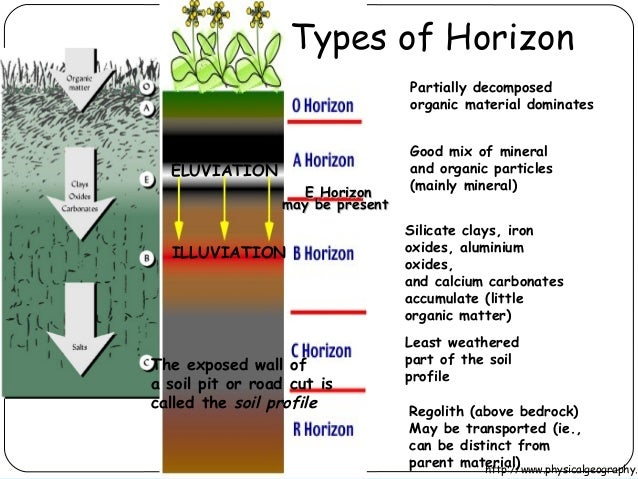 Soil pollution for What soil contains