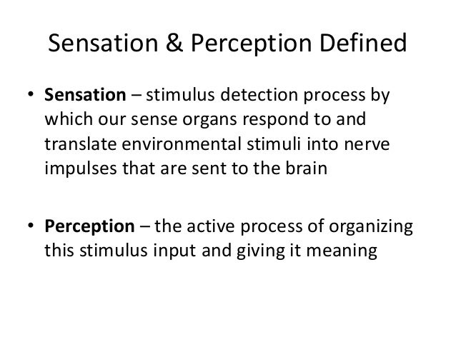 differences between sensation and perception What you'll learn to do: differentiate between sensation and perception   sensation and perception are two separate processes that are very closely  related.
