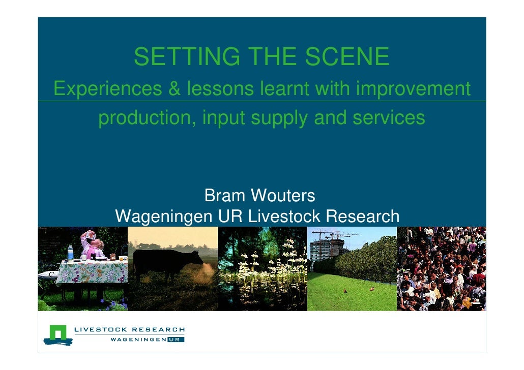 SETTING THE SCENEExperiences & lessons learnt with improvement    production, input supply and services               Bram...