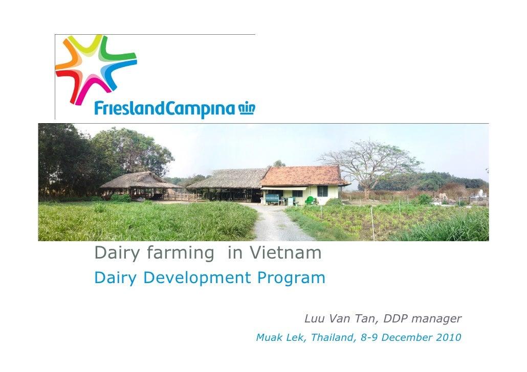 Dairy farming in VietnamDairy Development Program                         Luu Van Tan, DDP manager                 Muak Le...