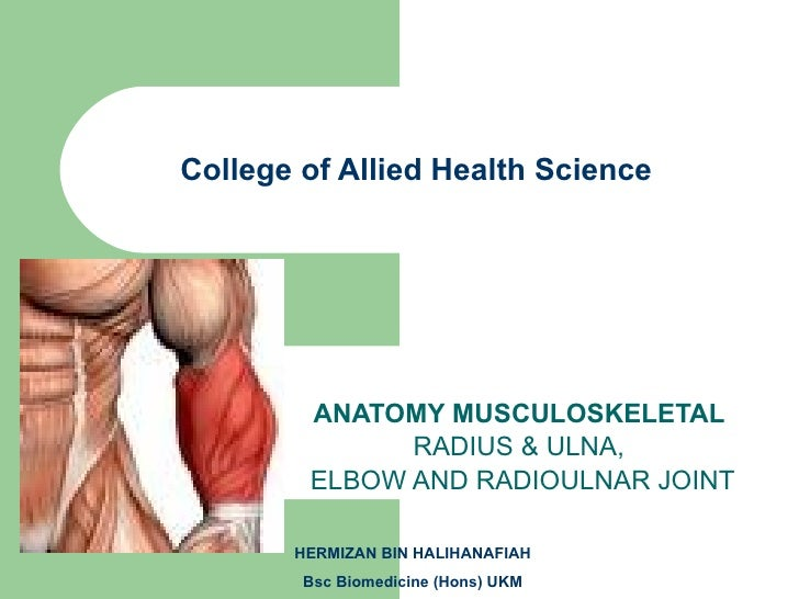 College of Allied Health Science ANATOMY MUSCULOSKELETAL  RADIUS & ULNA,  ELBOW AND RADIOULNAR JOINT HERMIZAN BIN HALIHANA...