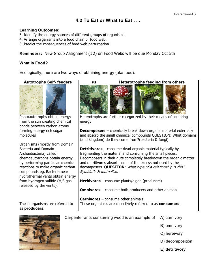 Interactions4.2                                   4.2 To Eat or What to Eat . . .  Learning Outcomes: 3. Identify the ener...