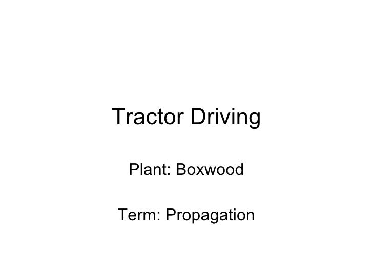 Tractor Driving Plant: Boxwood Term: Propagation