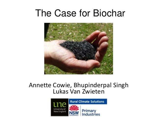 "Annette COWIE, Bhupinderpal SINGH, Lukas VAN ZWIETEN ""The value of soil organic carbon: the case for biochar"""