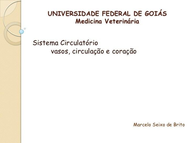 UNIVERSIDADE FEDERAL DE GOIÁS          Medicina VeterináriaSistema Circulatório     vasos, circulação e coração           ...