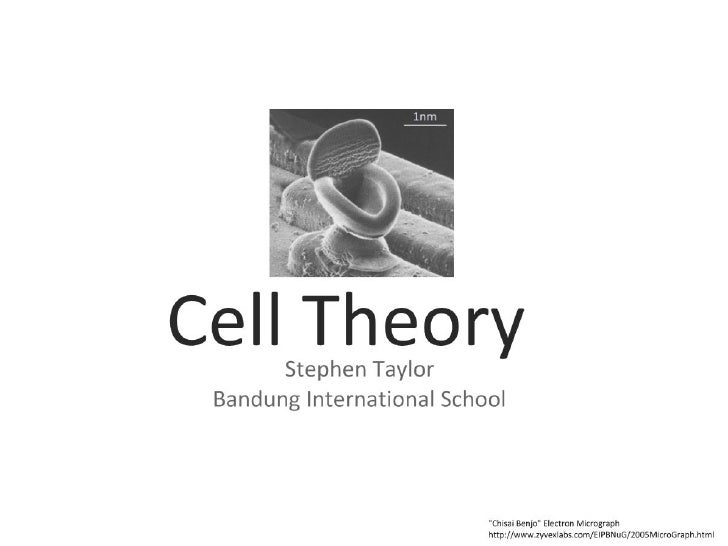 4 cell-theory-