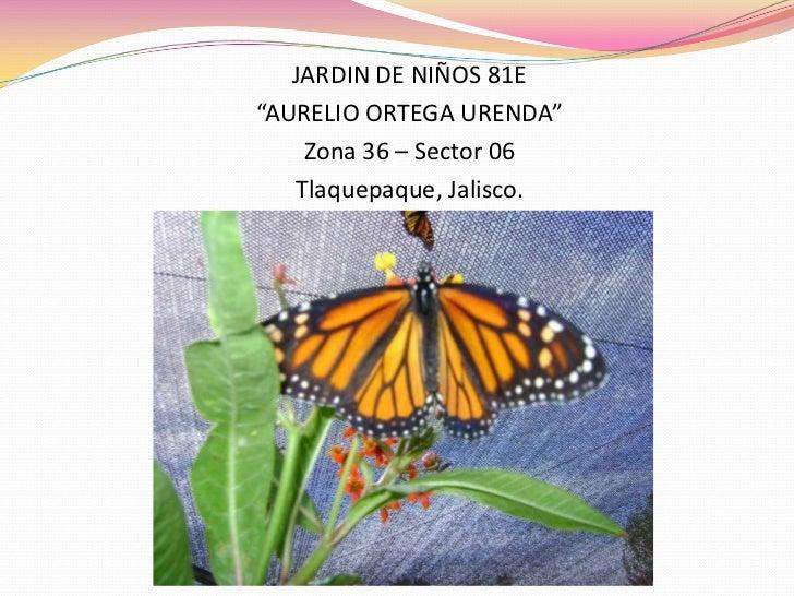 "JARDIN DE NIÑOS 81E""AURELIO ORTEGA URENDA""    Zona 36 – Sector 06   Tlaquepaque, Jalisco."