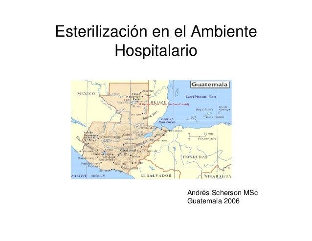 Esterilización en el Ambiente Hospitalario Andrés Scherson MSc Guatemala 2006