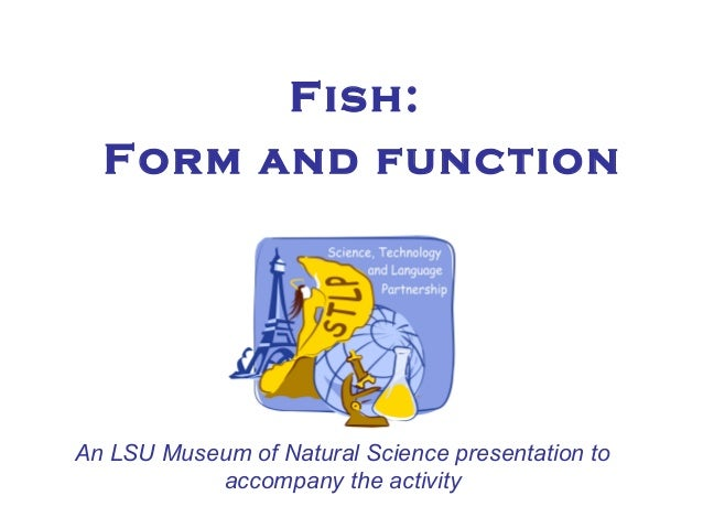 Fish: Form and function An LSU Museum of Natural Science presentation to accompany the activity