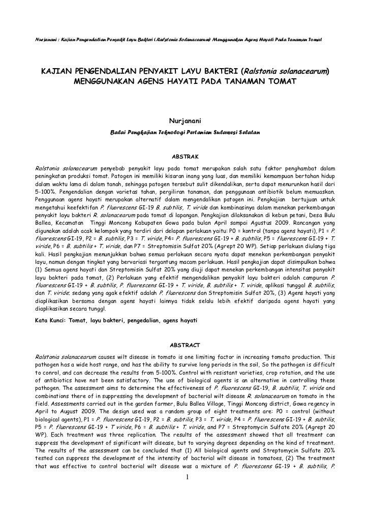 Nurjanani : Kajian Pengendalian Penyakit Layu Bakteri (Ralstonia Solanacearum) Menggunakan Agens Hayati Pada Tanaman Tomat...