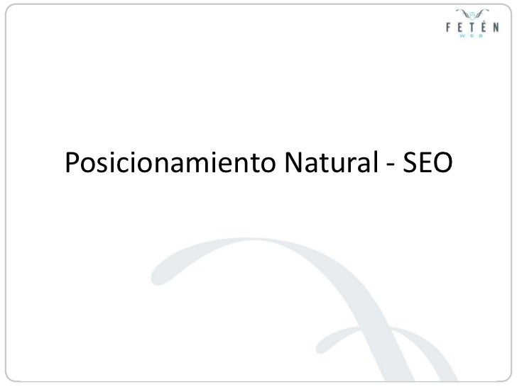 Posicionamiento Natural - SEO<br />