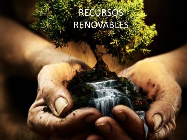 10 recurso renovable: