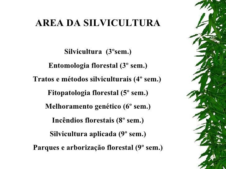 AREA DA SILVICULTURA Silvicultura  (3ºsem.) Entomologia florestal (3º sem.) Tratos e métodos silviculturais (4º sem.)  Fit...