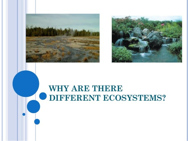 WHY ARE THEREDIFFERENT ECOSYSTEMS?