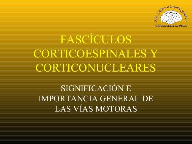 FASCÍCULOS CORTICOESPINALES Y CORTICONUCLEARES SIGNIFICACIÓN E IMPORTANCIA GENERAL DE LAS VÍAS MOTORAS