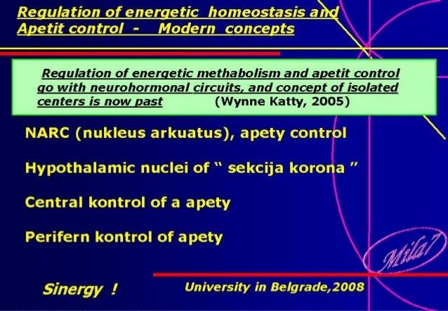 Sinergy ! University in Belgrade,2008University in Belgrade,2008