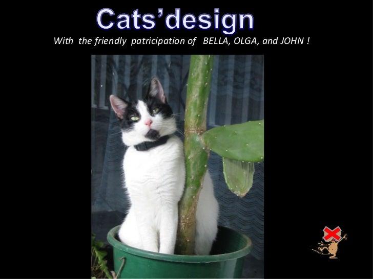 407-cats'design