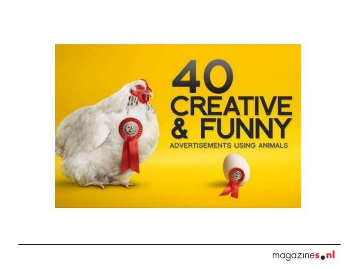 40 ads animals