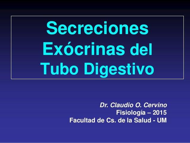 Secreciones Exócrinas del Tubo Digestivo Dr. Claudio O. Cervino Fisiología – 2015 Facultad de Cs. de la Salud - UM