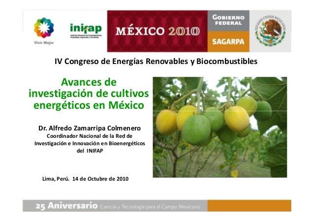 Avances de investigación de cultivos energéticos en México IV Congreso de Energías Renovables y Biocombustibles Dr. Alfred...