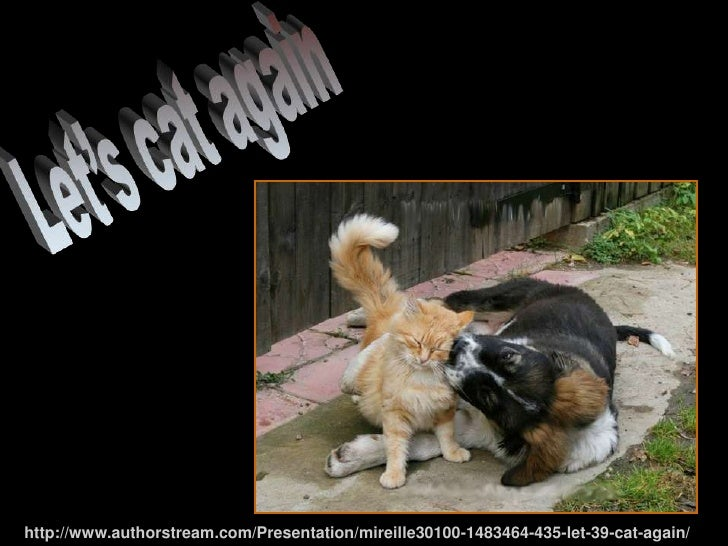 435 -Let's cat again