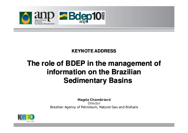 The role of BDEP in the management of information on the brazilian sedimentary basins
