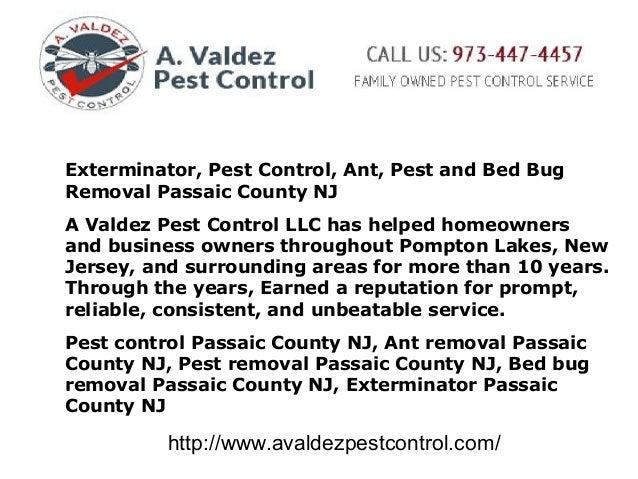 Forex pest control
