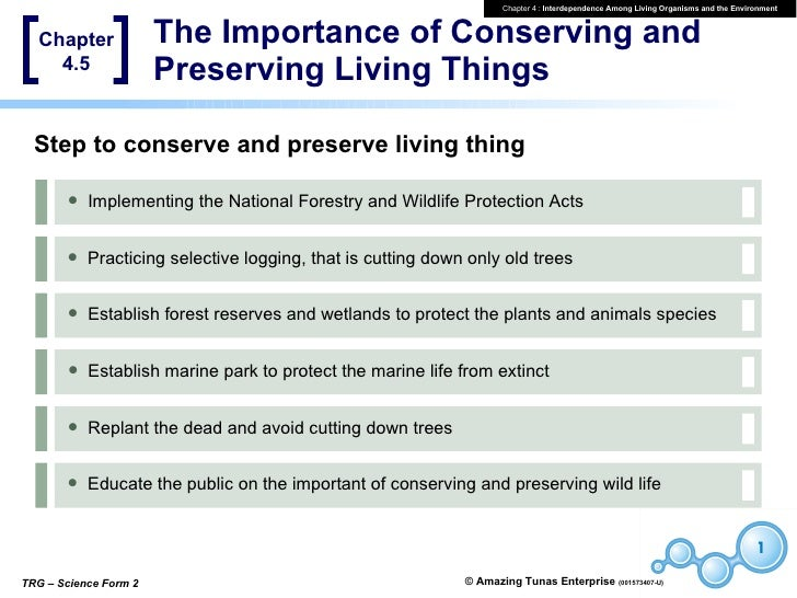 """importance of conservation and preservation in malaysia tourism essay Values and heritage conservation research report the getty conservation institute, los angeles """" e x p l o ra t o r y essay s ,"""" is a compendium of p ap e r s."""