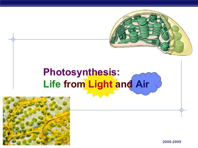 Photosynthesis:             Life from Light and AirAP Biology                             2008-2009