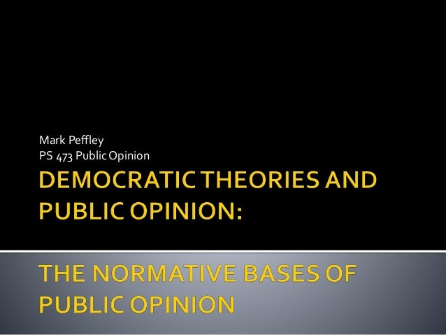 essay about public opinion