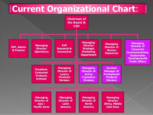 Organisational Structure of Regis Corporation