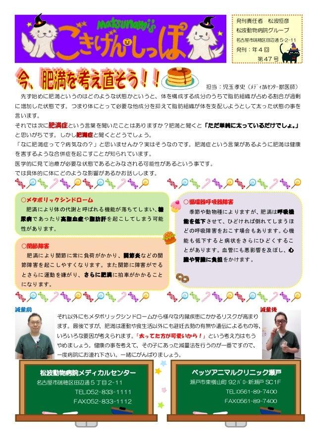 発刊責任者      松波恒彦                                                   松波動物病院グループ                                              ...