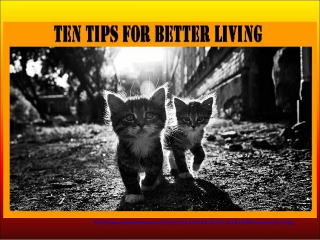 490 - Tips for better living