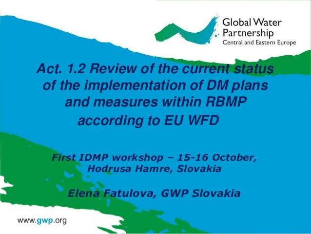 IDMP CEE Activity 1.2 by Elena Fatulova