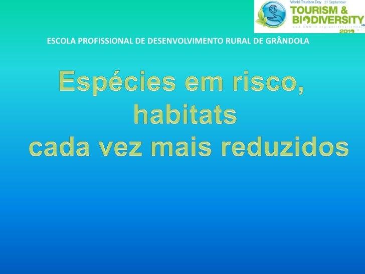 ESCOLA PROFISSIONAL DE DESENVOLVIMENTO RURAL DE GRÂNDOLA<br />Espécies em risco, <br />habitats<br /> cada vez mais reduzi...