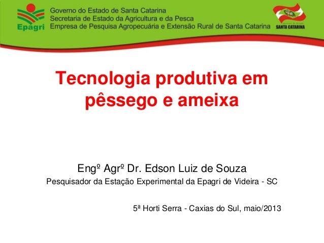 Tecnologia produtiva em pêssego e ameixa Engº Agrº Dr. Edson Luiz de Souza Pesquisador da Estação Experimental da Epagri d...
