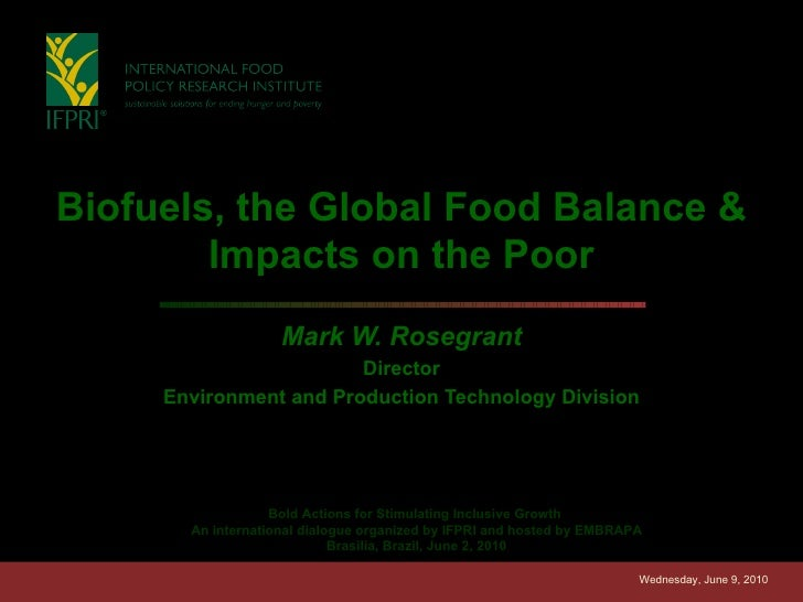 Biofuels, the Global Food Balance & Impacts on the Poor Mark W. Rosegrant Director Environment and Production Technology D...