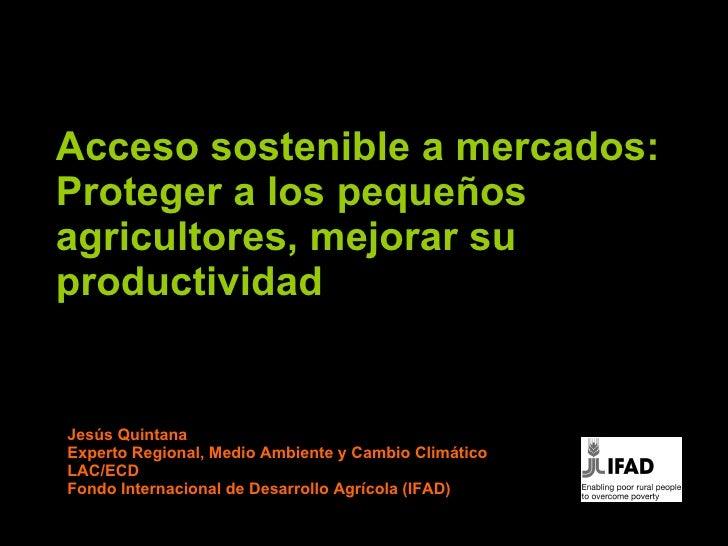 Acceso sostenible a mercados:  Proteger a los peque ñ os agricultores, mejorar su productividad Jesús Quintana Experto Reg...