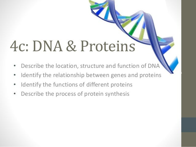 genes and proteins relationship advice