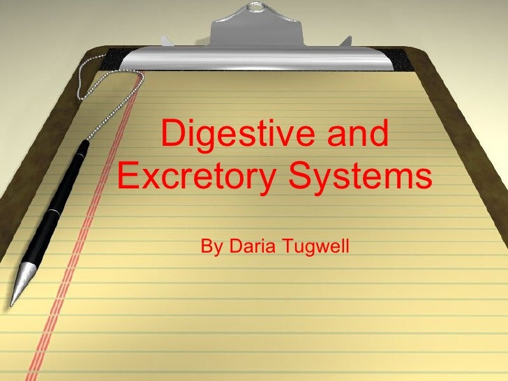 Digestive and Excretory Systems By Daria Tugwell