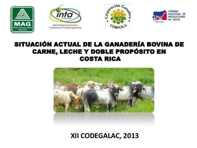 SITUACIÓN ACTUAL DE LA GANADERÍA BOVINA DE CARNE, LECHE Y DOBLE PROPÓSITO EN COSTA RICA  XII CODEGALAC, 2013